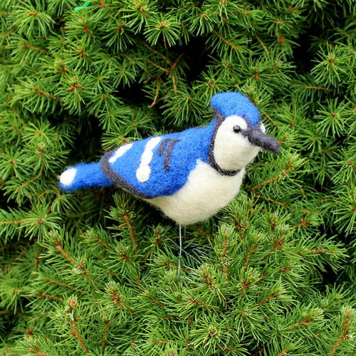 DIY needle felting kit: blue jay