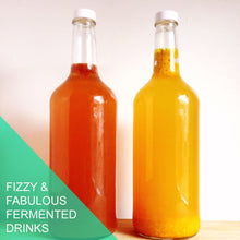 Fizzy & Fabulous Fermented Drinks  - Saturday September 14th, 1pm-3:30pm