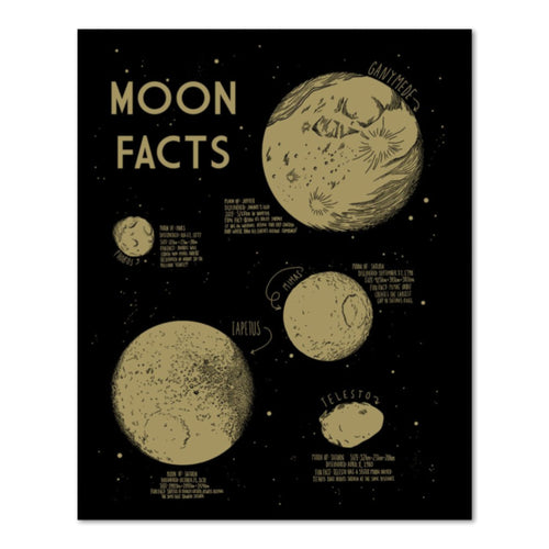 moon facts print 16x20