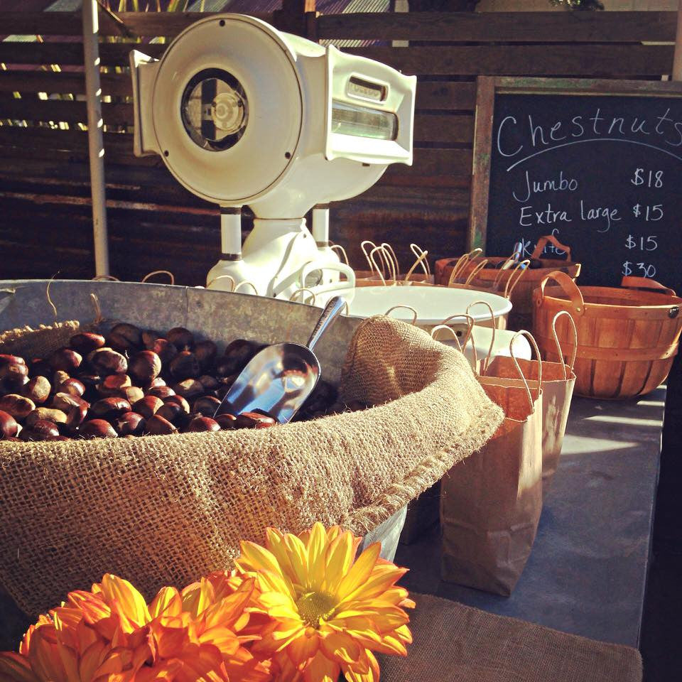 Photo of sales counter during the Sierra Oro Farm Trail - Chestnuts with scale