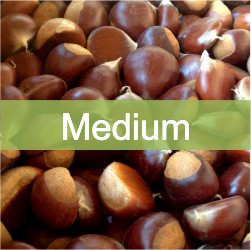 Medium quality, farm fresh chestnuts for sale online, buy direct retail from farmer