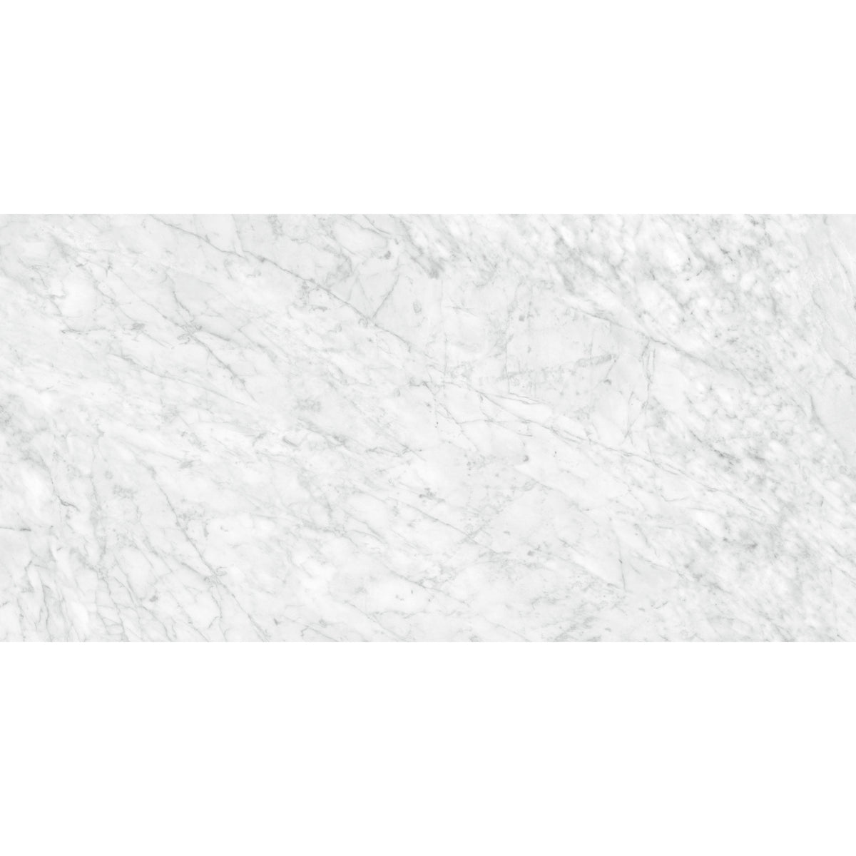 Anatolia - La Marca Glazed Porcelain 24 in. x 48 in. Honed Tile - Carrara Gioia
