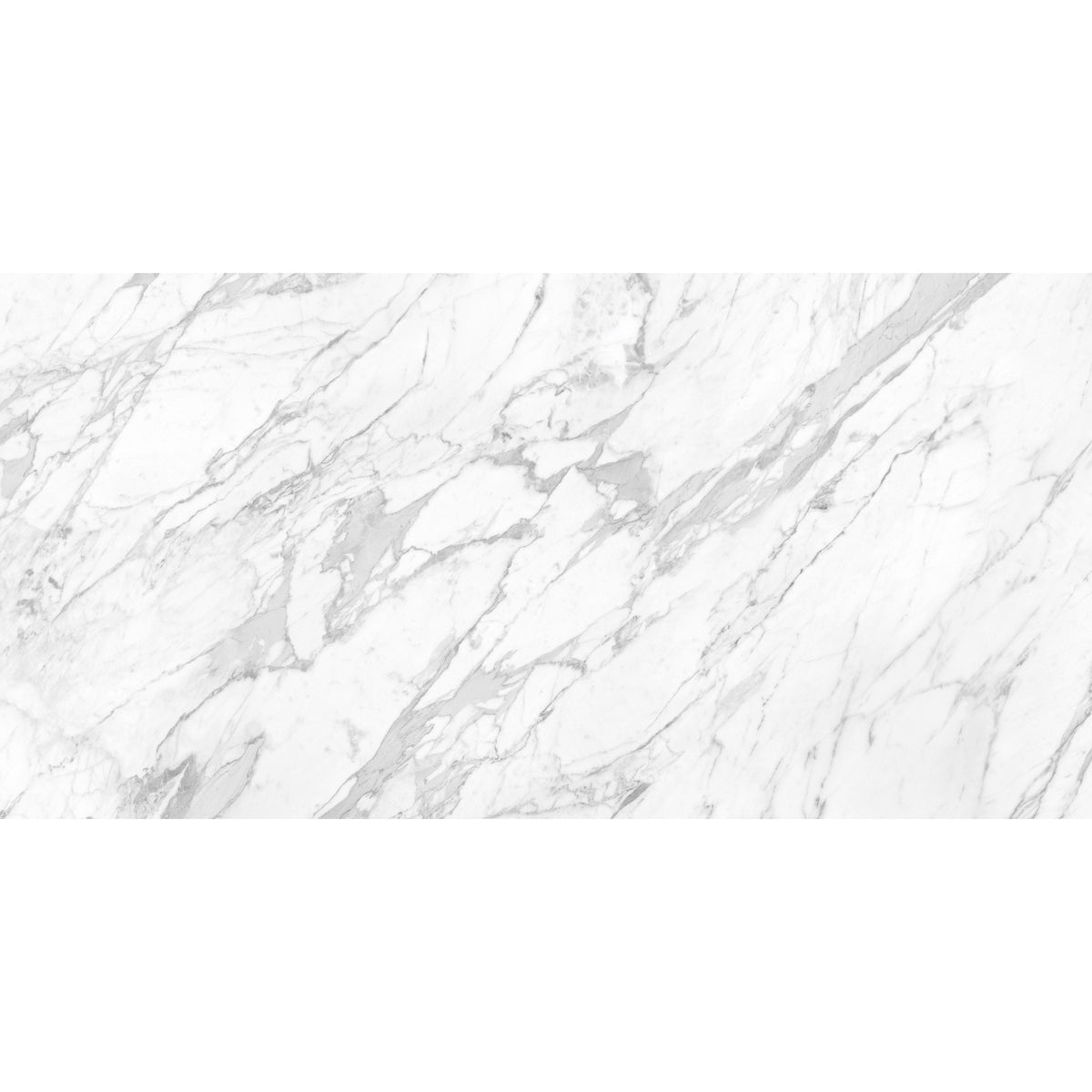 Anatolia - La Marca Glazed Porcelain 24 in. x 48 in. Polished Tile - Statuarietto