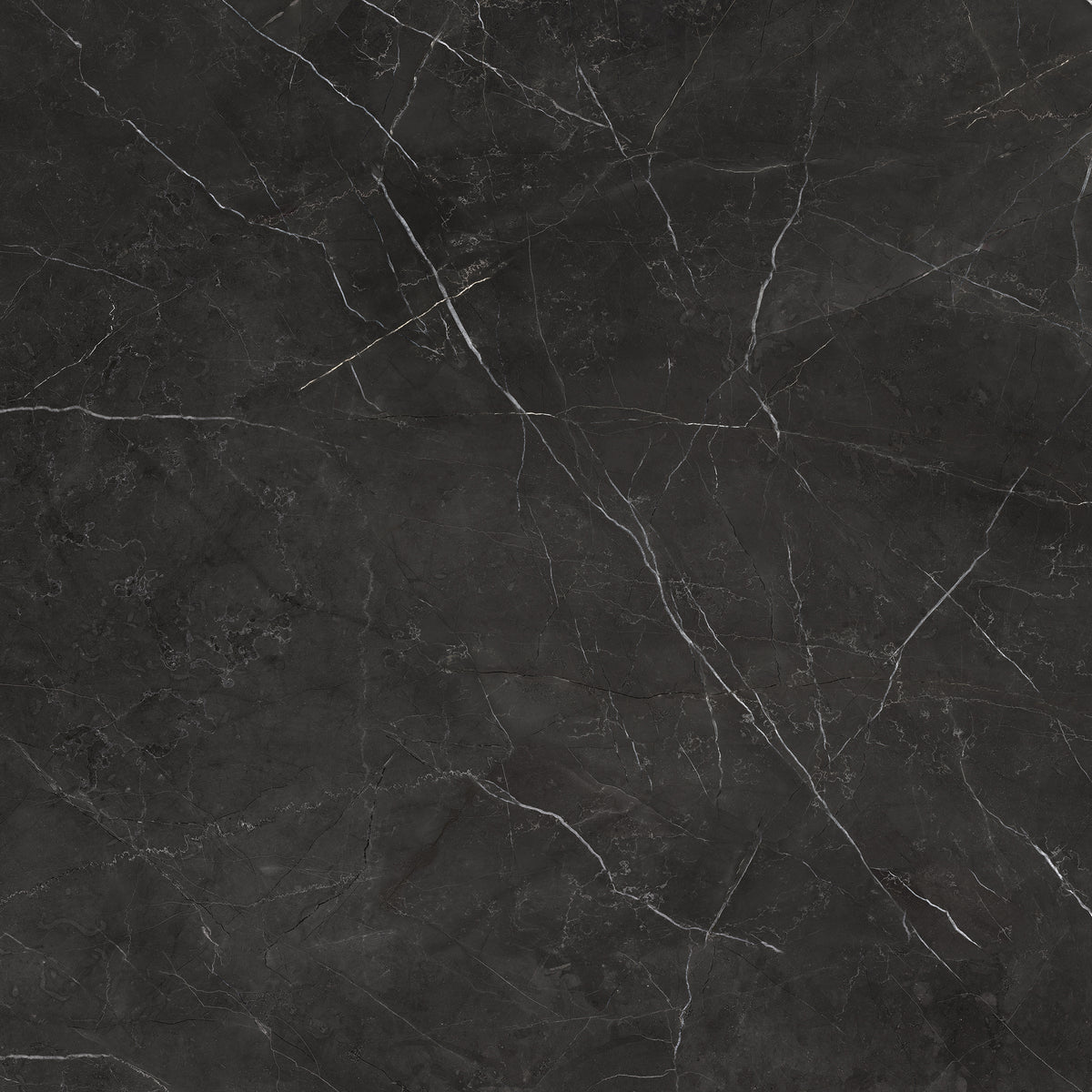 Anatolia - La Marca Glazed Porcelain 32 in. x 32 in. Honed Tile - Nero Venato