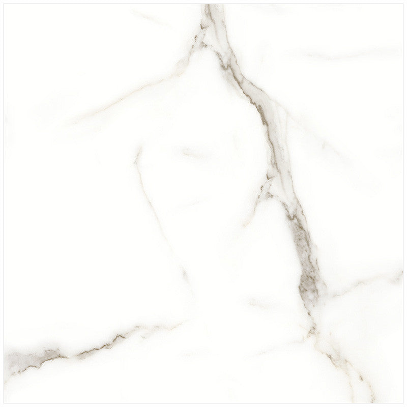 Anatolia Mayfair 24 in. x 24 in. HD Rectified Porcelain Tile Calacatta (Polished)