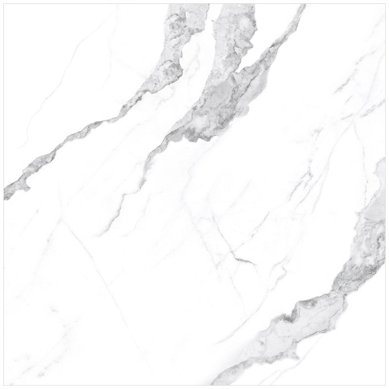 Anatolia Mayfair 24 in. x 24 in. HD Rectified Porcelain Tile Statuario (Matte)