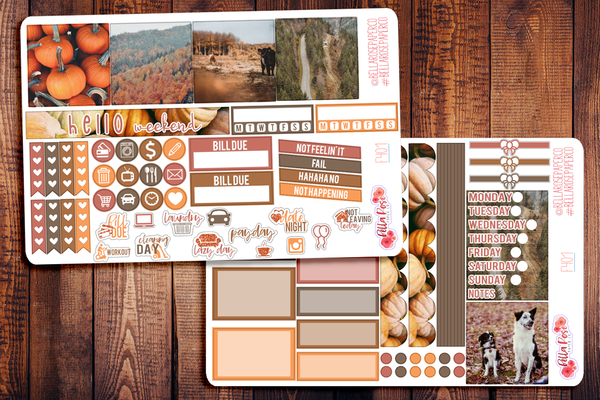 Autumn Days Photo Mini Happy Planner Sticker Kit F401