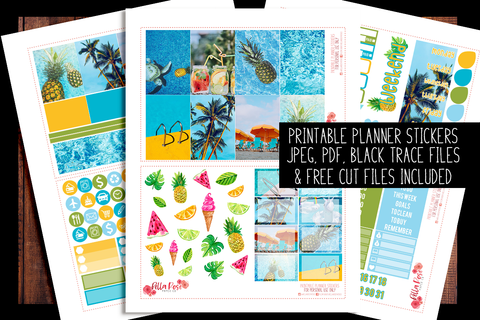 Pool Party Photo Happy Planner Kit | PRINTABLE PLANNER STICKERS