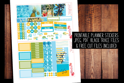 Pool Party Photo Mini Happy Planner Kit | PRINTABLE PLANNER STICKERS