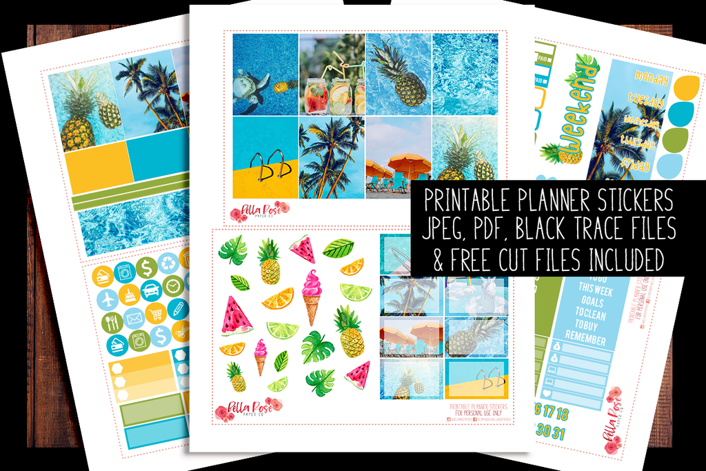 Pool Party Photo Planner Kit | PRINTABLE PLANNER STICKERS