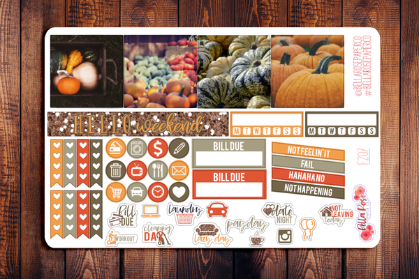 Pumpkin Photography Mini Happy Planner Sticker Kit F207