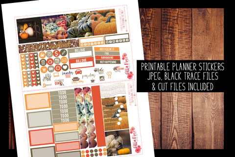 Pumpkin Photography Mini Happy Planner Kit | PRINTABLE PLANNER STICKERS