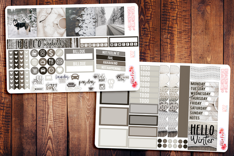 Winter Photo Mini Happy Planner Sticker Kit W202