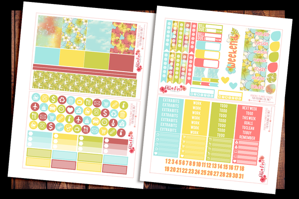 Cruise Vacation Happy Planner Kit | PRINTABLE PLANNER STICKERS