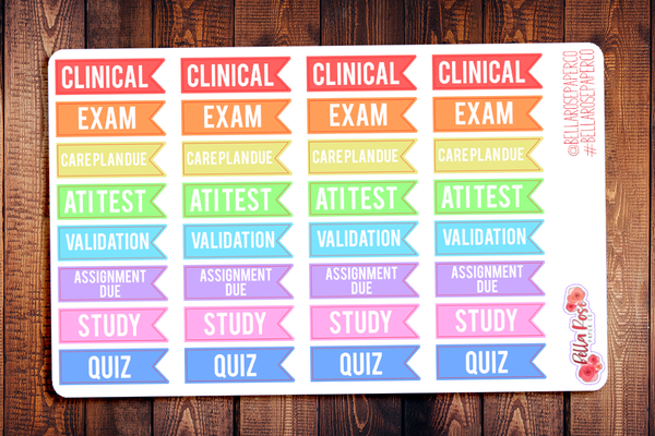 Nursing Student Flags Planner Stickers S006