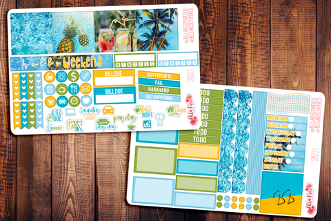 Pool Party Photo Mini Happy Planner Sticker Kit SM201