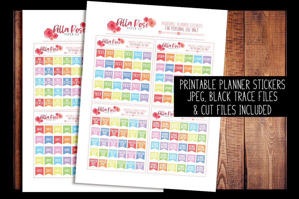 Mini College Student Flags | PRINTABLE PLANNER STICKERS