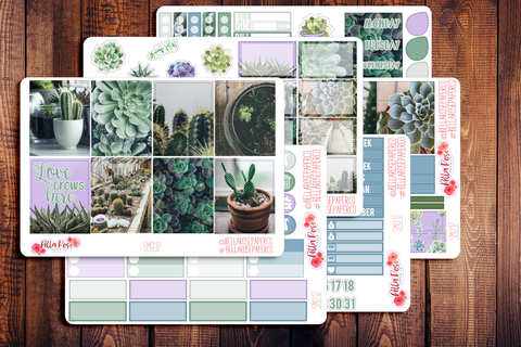Succulent Photography Planner Sticker Kit SM017