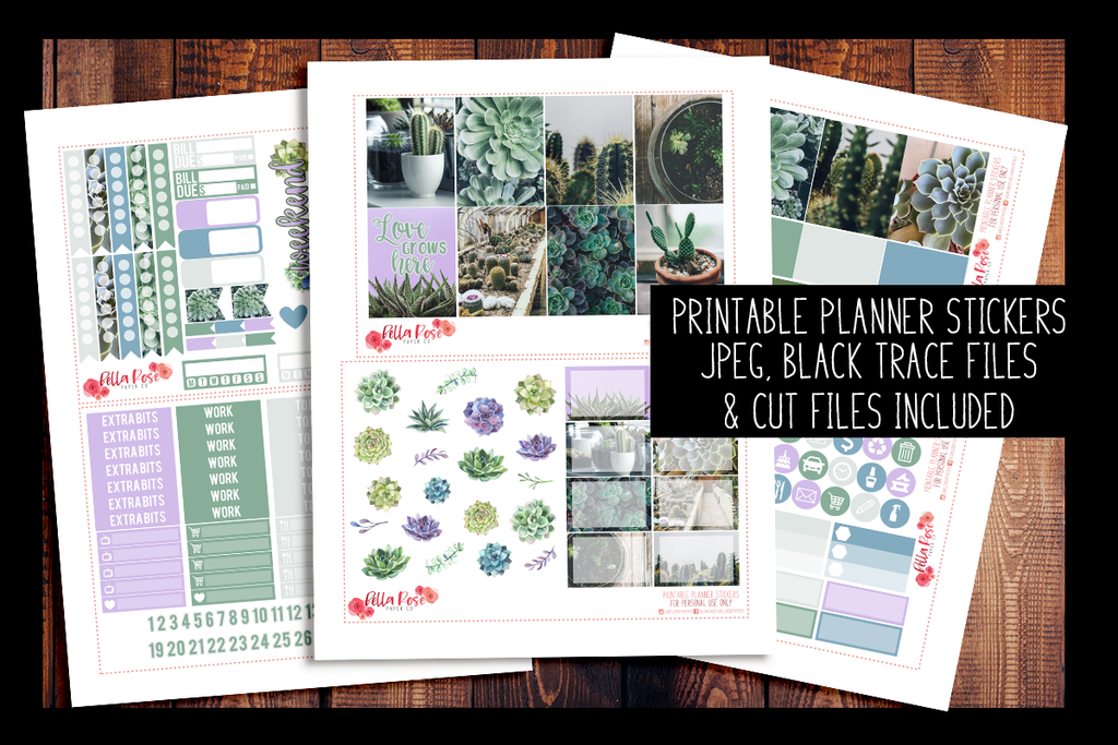 Succulent Photography Kit | PRINTABLE PLANNER STICKERS