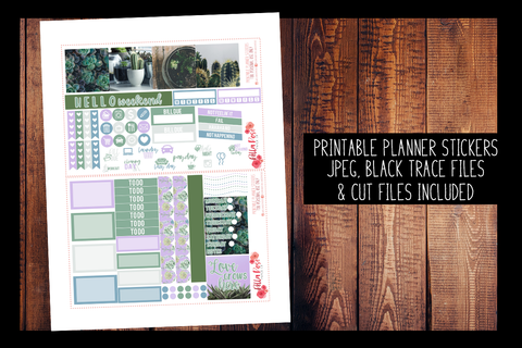 Succulent Photography Mini Happy Planner Kit | PRINTABLE PLANNER STICKERS