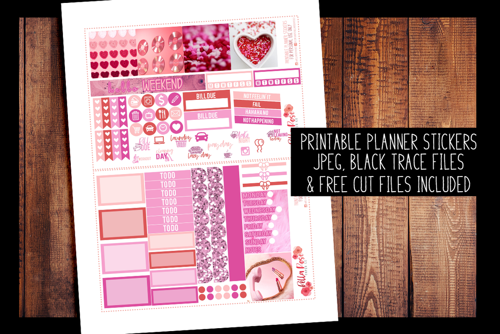Valentine's Day Photo Mini Happy Planner Kit | PRINTABLE PLANNER STICKERS