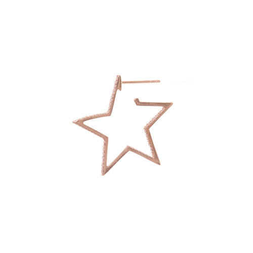 Erica Star Earrings