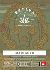 Marigold - Cannabis Extract