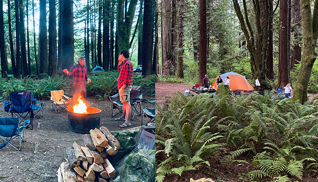 Camping in Elk Prarie Redwoods