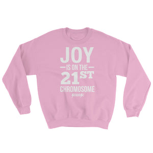 Sweatshirt---Joy---Click for more shirt colors
