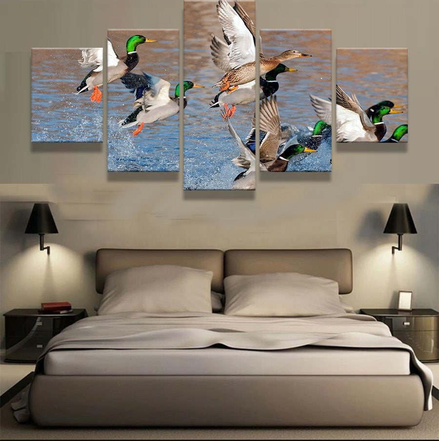 Mallard Ducks Rising from Water 5 piece HD Wall Print - Limited Edition