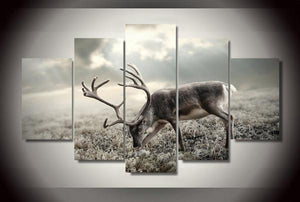 Caribou on Tundra 5 piece HQ Canvas Wall Art Print - Limited Edition