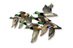 Flying Mallard Ducks Metal Wall Art Sculpture