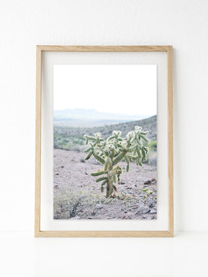 Drooping Cactus Printable