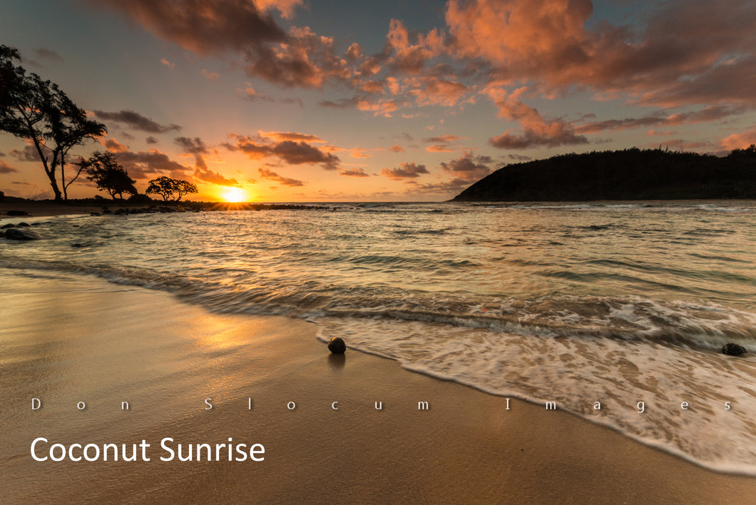 Coconut Sunrise by Don Slocum