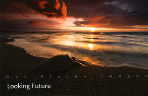 Looking Future by Don Slocum