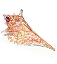 "Glass Sculpture ""Green/Orange Seashell"" Extra Large"