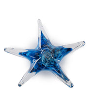 "Glass Starfish ""Blue"""
