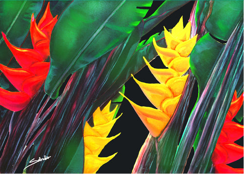 Multiple Heliconia