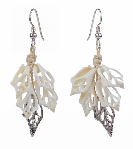 White & Silver Shell Earrings