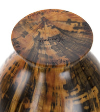 Norfolk Pine Vessel #1678