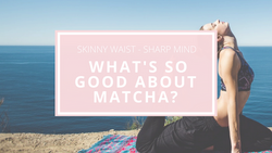 What's so good about MyMatcha?