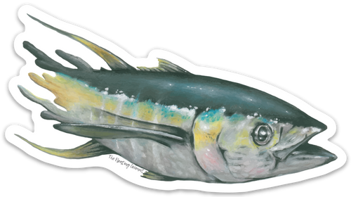 Yellow Fin Tuna Decal