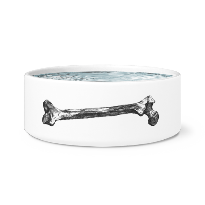 dog bowl pet bowl