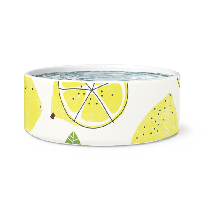 lemon pet bowl