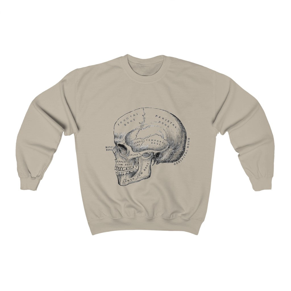 skull anatomy crewneck sweater (more colours)