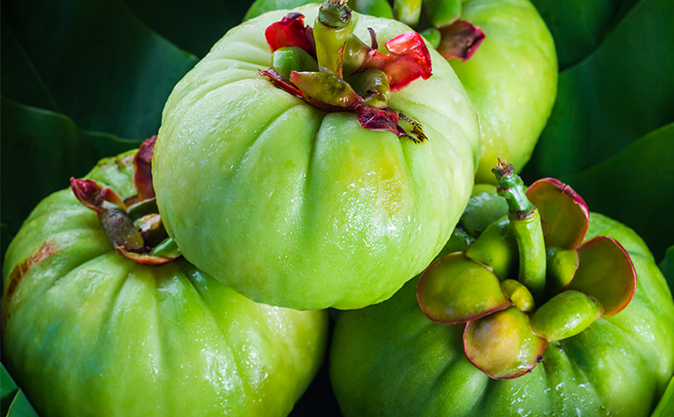 Garcinia Cambogia Extract: 4 Health Benefits Beyond Weight Loss