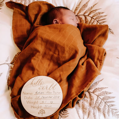 "Wooden ""Hello World"" Birth Announcement Disc- Australiana - nursery decor"