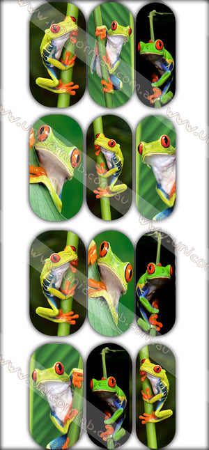 Frog Waterslide Decals - Emerson Crystals