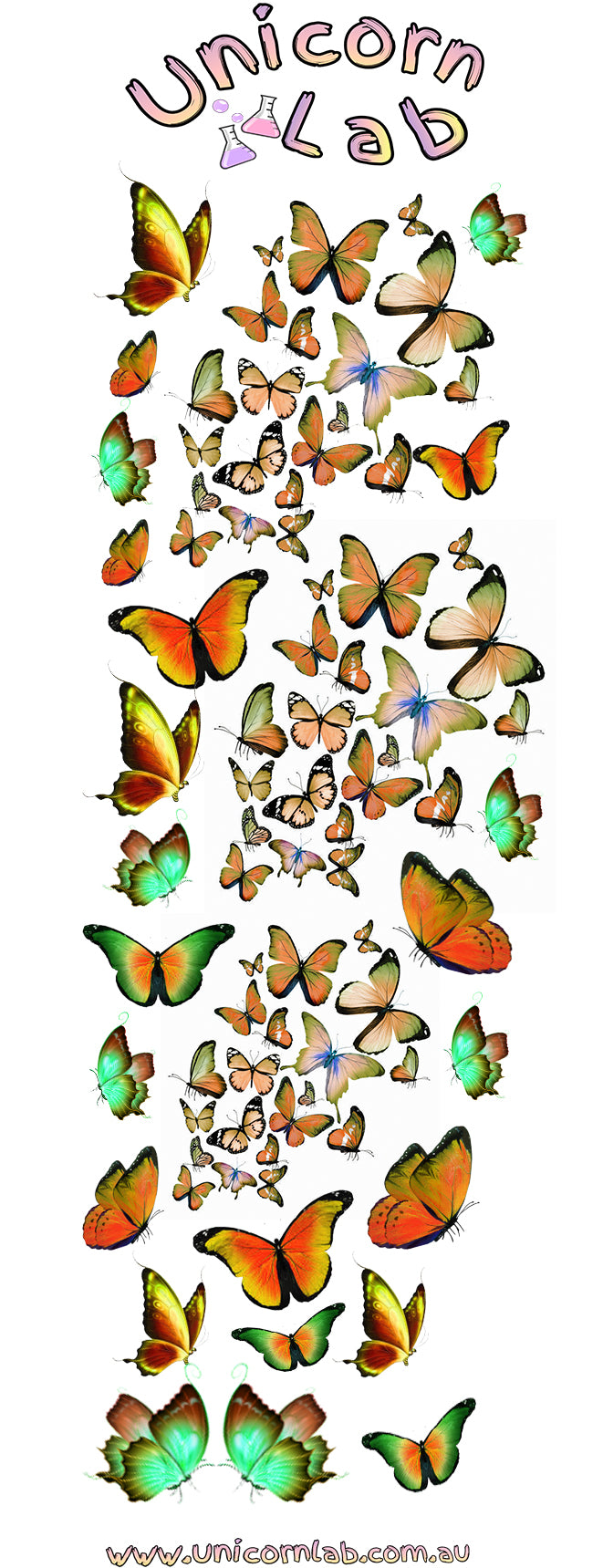 Orange Butterfly Waterslide Decals
