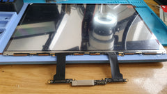 A1706 Screen Fault Replacement